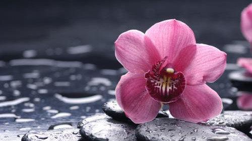 塔羅牌占卜:近期會有爛桃花纏上你嗎?